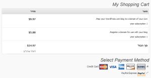 צילום מסך של תהליך התשלום על רישום דומיין חדש